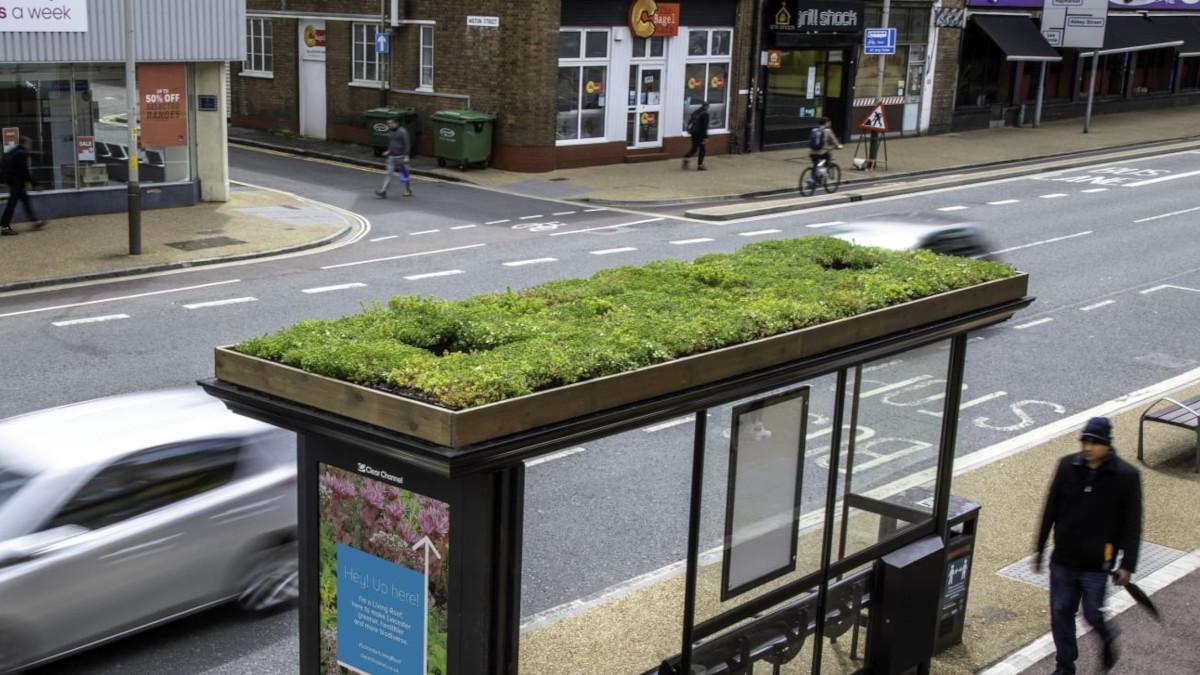 Зелені дахи на автобусних зупинках використали для адаптації до змін клімату
