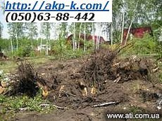 Уборка участков, спилить древо Киев